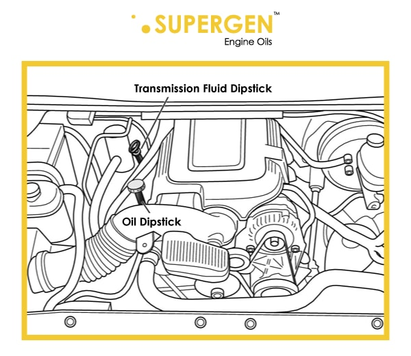 Diagram of car engine with oil dipstick and Transmission fluid dipstick